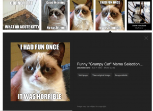 An example of what google image search looks like.